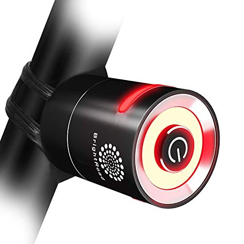 BrightRoad LED Rechargeable Bike