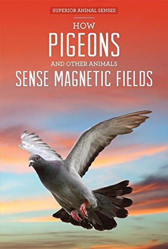 Download How Pigeons and Other Animals Sense Magnetic Fields (Superior Animal Senses) pdf epub