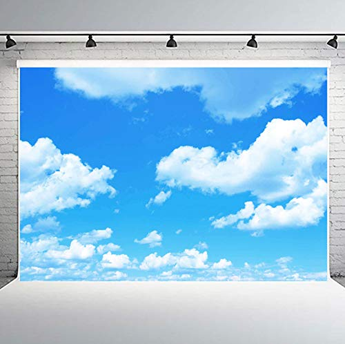 PHMOJEN 10x7ft Blue Sky White Clouds Backdrop Natural Scenery Photography Background Photo Studio Photography YouTube Twitter Backdrop Props PH002 ()