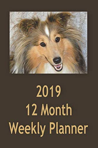 2019 12 Month Weekly Planner: 1 Year Daily/Weekly/Monthly Planner, January 2019-December 2019, Shetland Sheep Dog Cover
