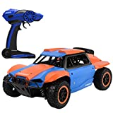 Hisoul Hot  RC Car Toys for Kids Age 8 1/18 2.4G 4 WD Off Road Remote Control Truck Radio Remote Control Car Racing for Adults and Children (B)