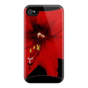 Awesome Amaryllis Dorest Fractal Flip Case With Fashion Design For Iphone 4/4s