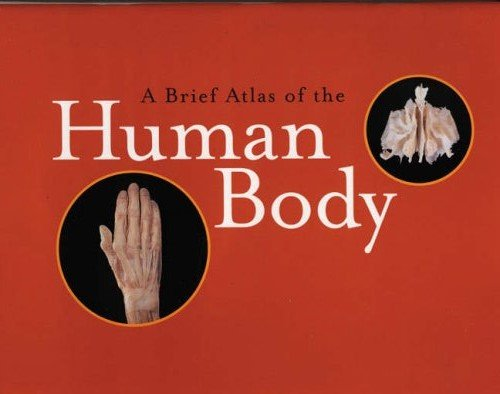 A Brief Atlas of the Human Body for sale  Delivered anywhere in USA