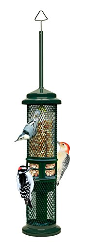 Squirrel Buster Peanut+ Squirrel-proof Bird Feeder w/Woodpecker Friendly Tail Prop, holds 1.3 pounds of Shelled Peanuts Only