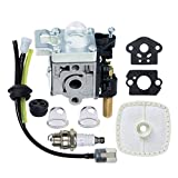 HOODELL SRM-210 GT-200R Carburetor Kit for Echo SRM-230 HC-150 PE-200 PPF-210 PAS-230 Carb Rebuild, with Spark Plug Primer Bulb Air Filter for Weed Eater, String Hedge Trimmer, Edger