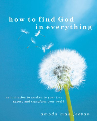 Download How to Find God in Everything: An Invitation to Awaken to Your True Nature and Transform Your World pdf