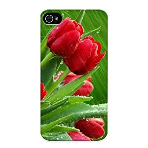 Fashionable Style Case Cover Skin Series For Iphone 4/4s- April Showers