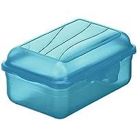 Rotho Funbox Vesperdose, Kunststoff (BPA-frei)