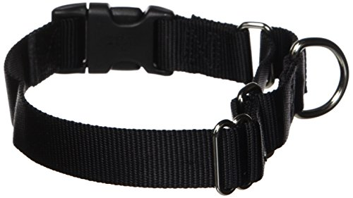 "PetSafe Martingale Collar with Quick Snap Buckle, 1"" Medium, Black"