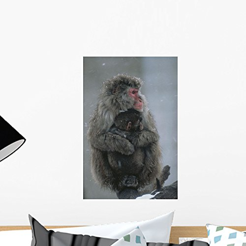 Mother Snow Monkey or Wall Mural by Wallmonkeys Peel and Stick Graphic (18 in H x 12 in W) WM319049