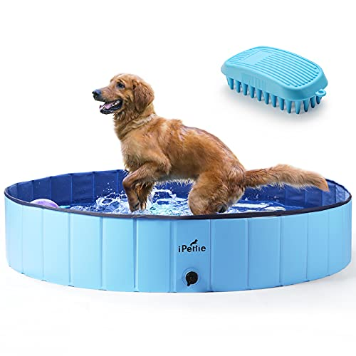 "iPettie Foldable Dog Pool, Collapsible Dog Pool, Dog Swimming Pools for Large Dogs, Kiddie Pool for Dogs, Cats & Kids, Blue, 63"" x 12"""