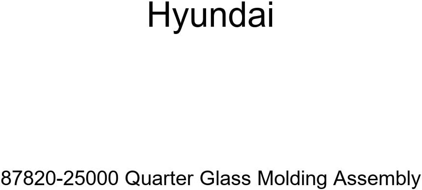 Genuine Hyundai 87820-25000 Quarter Glass Molding Assembly