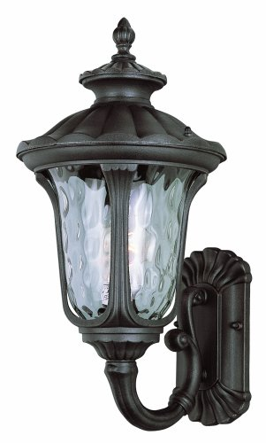 Trans Globe Lighting 5911 RT Outdoor Knolls 18.75