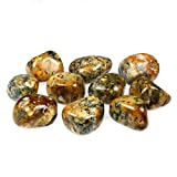 CrystalAge Golden Merlinite Tumble Stone