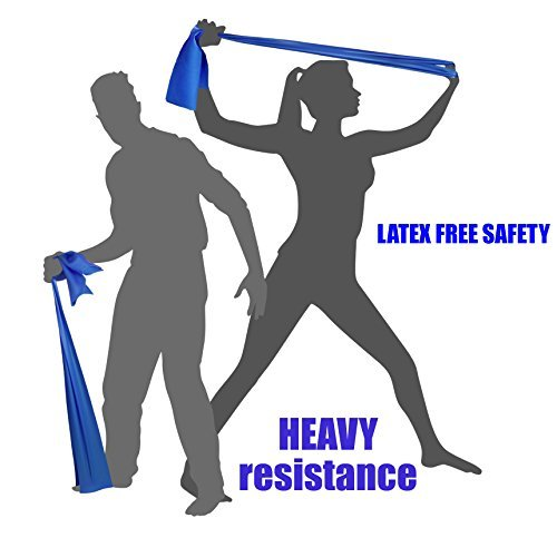 HEAVY TENSION EXERCISE RESISTANCE BANDS - Home Gym Fitness Equipment. Ideal for Physical Therapy, Strength Workout, Theraband, Pilates, Beachbody, Yoga, Mat, Rehab, Seated | LATEX-FREE | 6.5ft