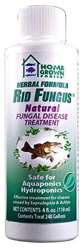 KORDON 96032 Rid Fungus Natural Disease Treatment, 4-Ounce