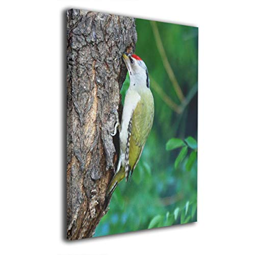 (Baerg Woodpecker Tree Hole Frameless Decorative Painting Wall Art for Home and Office Decorations)