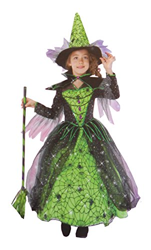 Princess Factory Girl's Magical Witch Spiderweb Costume - Green and Black 3-4