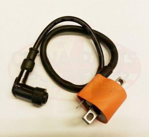 Ignition Coil HT Lead /& Spark Plug Cap For Lexmoto Diablo 125 LJ125T-8M
