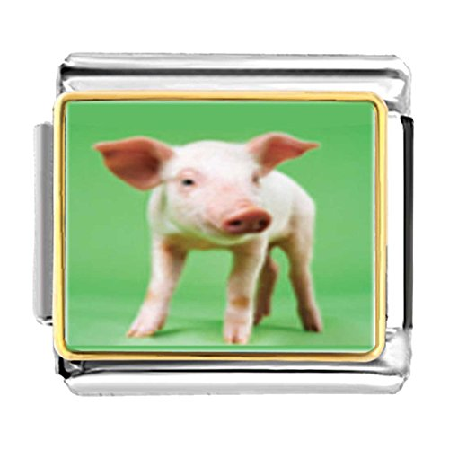 - GiftJewelryShop Gold Plated Pig Bracelet Link Photo Italian Charm