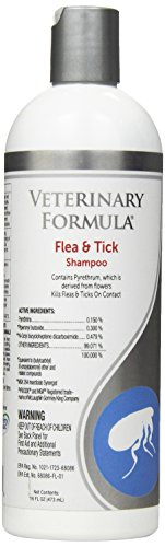 Formula Bath (Veterinary Formula Clinical Care Flea and Tick Shampoo for Dogs and Cats, 16 oz – With Pyrethrum to Kill Fleas and Ticks On Contact – Cleanses and Exfoliates)