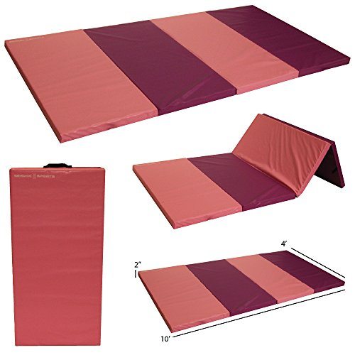 Seismic Sports - SSM-4102PP - Pink and Purple Gymnastics Mat for Tumbling Yoga Exercise Karate Cheer, 4' x 10' x 2' by Seismic Sports