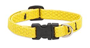 LupinePet 1/2-Inch Recycled Fiber Collar, Adjustable for 10 to 16-Inch Small Dogs, Sunshine