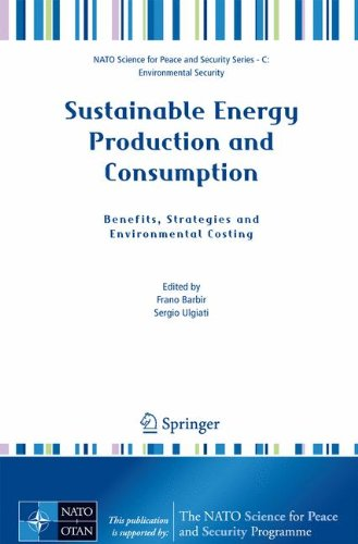 Sustainable Energy Production and Consumption: Benefits, Strategies and Environmental Costing (NATO Science for Peace an