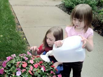 Turning Them into Watering Cans Snaps onto Most Plastic Gallon and Half-Gallon Jugs White /& Yellow Gadjit Sprinkle Spout Daisy-Shaped Sprinkler Head