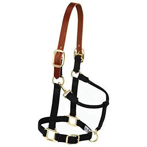 Weaver Leather Nylon Adjustable Breakaway Horse Halter, Average, Black