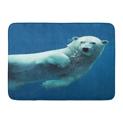 Arctic Ocean Underwater Camera - 8