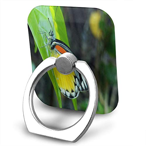 Ring Holder Phone Finger Ring Stand Square Beauty Nature Butterfly Green Leaf 360°Rotation Multifunctional