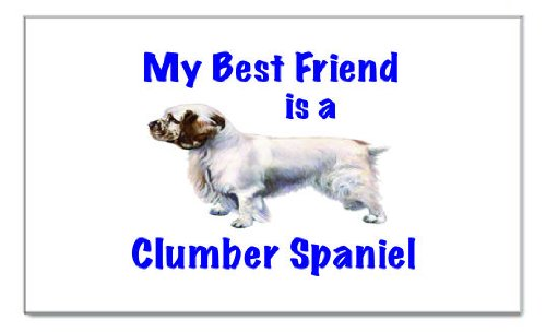 My Best Friend is Clumber Spaniel Rectangular Magnet