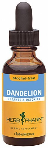 Herb Pharm Certified Organic Alcohol-Free Dandelion Glycerite for Detoxification - 1 Ounce by Herb (Alcohol Free 1 Oz Herbs)