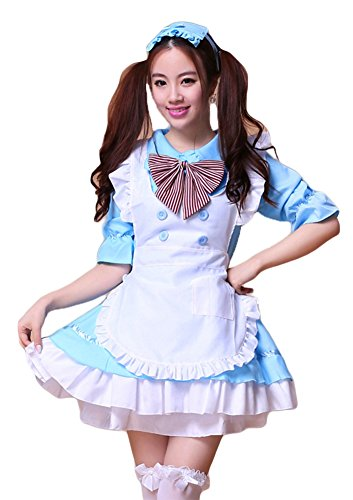 AvaCostume Adult Anime Cosplay French Maid Fancy Dress Costume, L, Blue (Beer Maid Costumes)