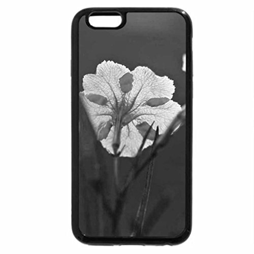 iPhone 6S Plus Case, iPhone 6 Plus Case (Black & White) - RUELLIA FLOWERS IN THE MORNING SUN