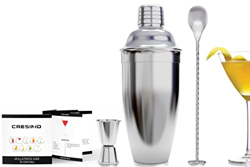 Buy cocktail shaker best