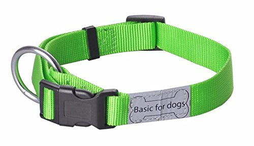 Wouapy Basic Line Collar for Dog, 15 mm Width, Neck Size 25/40 cm, Green