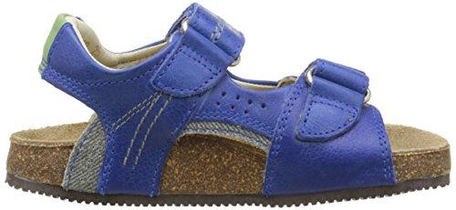 Aster Kendal Jungen Sandalen Blau - Bleu (Bleu Electric)