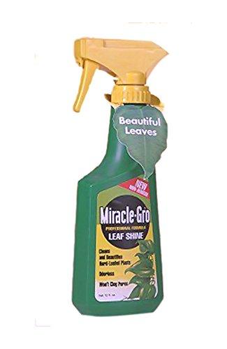 bonsaiboy-miracle-grow-leaf-shine-12-oz