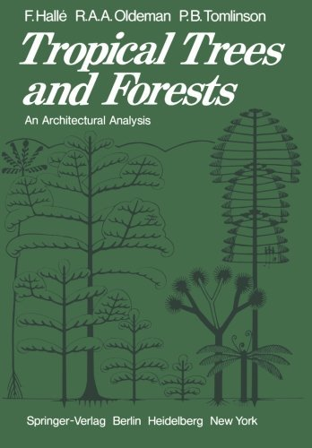 By F. Halle Tropical Trees and Forests: An Architectural Analysis (Softcover reprint of the original 1) [Paperback]