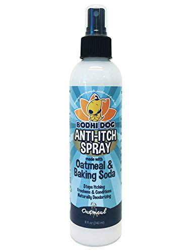 Natural Antibacterial Remedy - NEW Anti Itch Oatmeal Spray for Dogs and Cats | 100% All Natural Hypoallergenic Soothing Relief for Dry, Itchy, Bitten or Allergic Damaged Skin Treatment | Professional Quality - 1 Bottle 8oz (240ml)