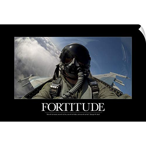 (CANVAS ON DEMAND Kate Lillyson Wall Peel Wall Art Print Entitled Military Poster: Self-Portrait of a Pilot in The Cockpit of a F-15E Strike Eagle 30