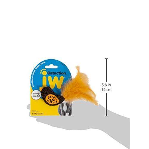 durable modeling JW Pet Bird Cataction Toy