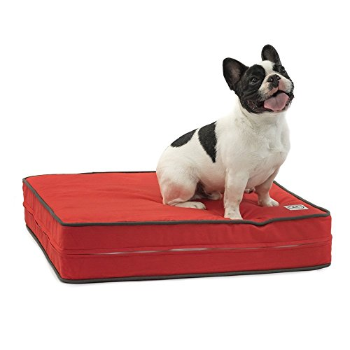 Premium Memory Foam Dog Beds with Removable Cotton Outer Cover and Waterproof Interior | Perfect for Small Dogs and Medium Dogs | Proudly Made in the USA | Fire Engine Red Circles, Small (22