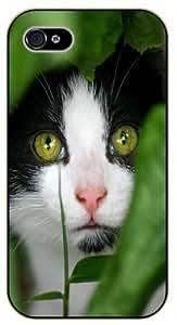 iPhone 5 / 5s Sneaky cat - black plastic case / Nature, Animals, Places Series