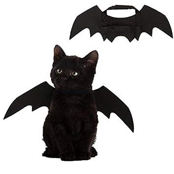 Dewin Alas de murciélago de Gato - Mascota Perro Gato Alas ...