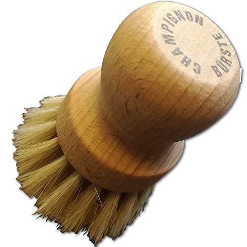 Holz-Pilzbürste, Rosshaar, 7,7cm, weiche Naturborsten, Champignons schonend putzen, aus Deutschland, Buche, 1 Stück, Pilze trocken von Sand reinigen, für alle frischen Pilze, praktischer Küchenhelfer
