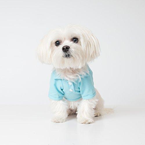 United Pups Dog Polo Shirt (Chill Pups Blue, Size 3)