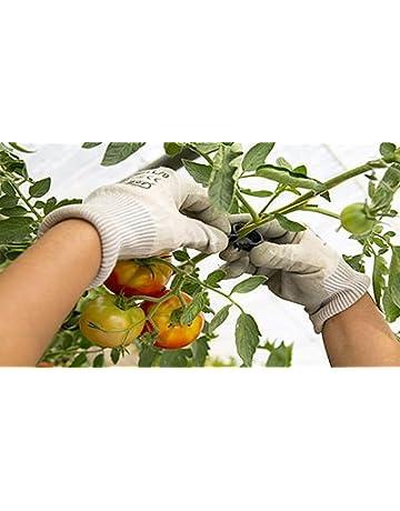 PAMPOLS 100 Clips o Soportes para tomateras y Otras Flores, Plantas y brotes TREPADORAS de